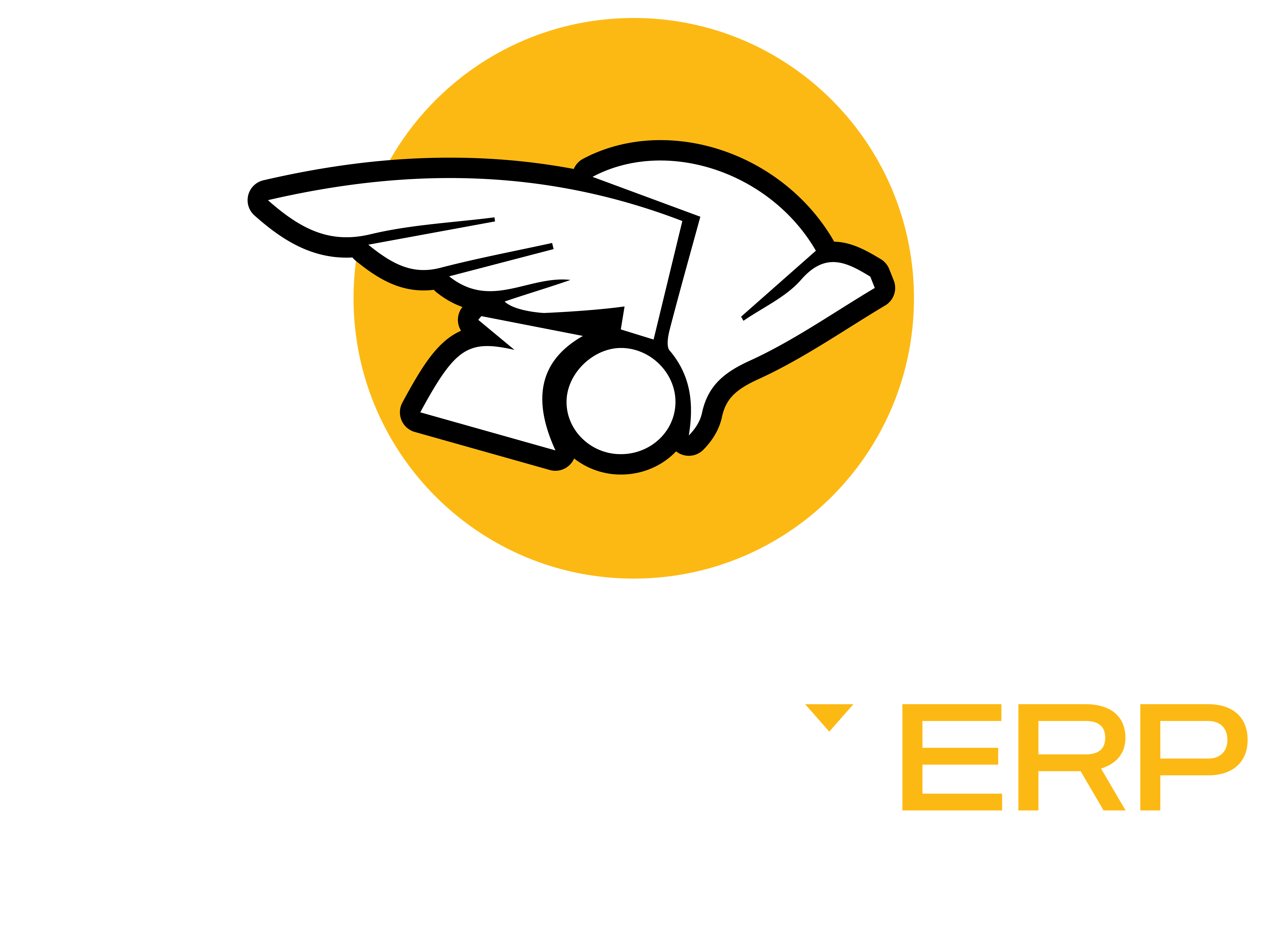 Mercury ERP